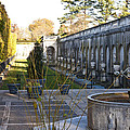 Roman Gardens In Fall by Lou Ford