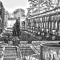 Roman Gardens In The Fall - Bw by Lou Ford
