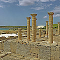 Roman Ruins Of Baelo Claudia by Panoramic Images