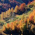 Romania, Transylvania, Carpathian by Emily Wilson