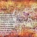 Romans 12 68 by Michelle Greene Wheeler