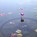 Romantic Pond by Ben and Raisa Gertsberg