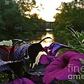 Romantic River View by Customikes Fun Photography and Film Aka K Mikael Wallin
