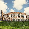 Rome Colosseum  by Sophie McAulay
