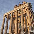 Rome Temple Of Antoninus And Faustina 01 by Antony McAulay