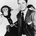 Ronald Reagan And Bonzo by Underwood Archives