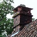 Roof Tops 2 by Richard Rosenshein