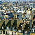 Roof Tops And Eiffel Tower by Rene Sheret