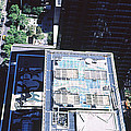 Rooftop Of Museum Of Modern Art by Panoramic Images