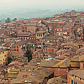 Rooftop View Of Siena Italy by Kim Fearheiley