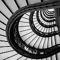 Rookery Building Looking Up The Oriel Staircase - Black And White by Anthony Doudt
