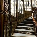 Rookery Building Up The Oriel Staircase by Anthony Doudt