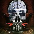 Room Skull by Ali Gulec