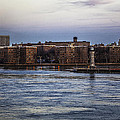 Roosevelt Island View - Nyc by Madeline Ellis