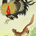 Rooster And Weasel by Pg Reproductions