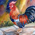 Rooster At Sunrise by Janet Zeh