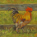 Rooster Strut by Sandra Reeves