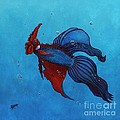 Roosterfish IIi by Fred-Christian Freer