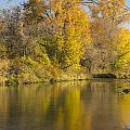 Root River Autumn 1 by John Brueske