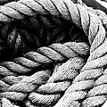 Rope Black And White by Cathy Anderson