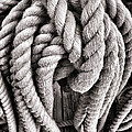 Rope by Olivier Le Queinec