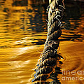 Rope On Liquid Gold by Kaye Menner