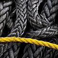 Ropes by Jeffrey Woodley