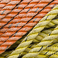 Ropes by John Shaw