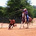 Roping by Dean Wittle