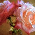 Rose 166 by Pamela Cooper