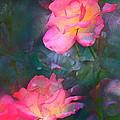 Rose 194 by Pamela Cooper