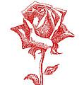 Rose 2 Iphone Case by Gordon Punt