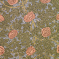Rose 93 Wallpaper Design by William Morris