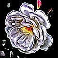 Rose An Petals  by Kathy Sampson