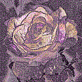 Rose Art # 1 by Selicia Russo