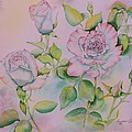 Rose Bloom by Heather Gallup
