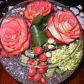 Rose Bowl by Cindy Goshko