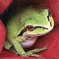 Rose Frog by Pat Erickson
