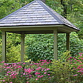 Rose Garden Gazebo by Maria Urso