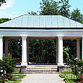 Rose Garden Pergola In Delaware Park Buffalo Ny Oil Painting Effect by Rose Santuci-Sofranko