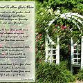 Rose Garden Prayer by Carolyn Marshall