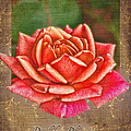Rose Greeting Card Birthday by Debbie Portwood