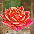 Rose Greeting Card With Verse by Debbie Portwood