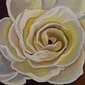 Rose by Laurine Baumgart