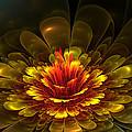 Rose Of Demina by Amorina Ashton