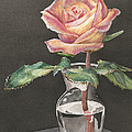 Rose Of Hope by Shelly Bilicke