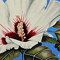 Rose Of Sharon by Karen Beasley