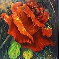 Rose Red by Barbara Haviland