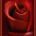 Rose Red by Bobbee Rickard