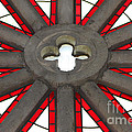 Rose Window Closeup by Art Block Collections